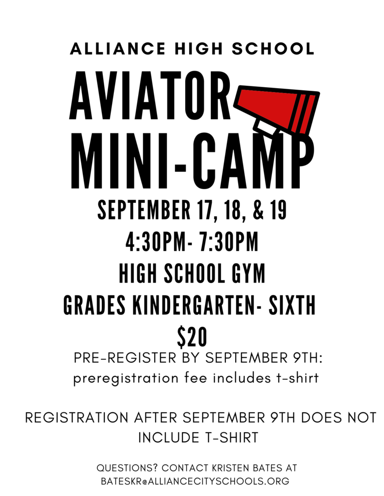 aviator mini camp